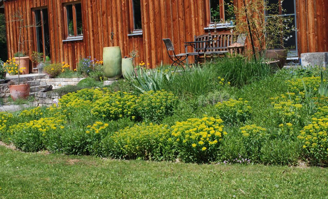 Frühlingseindrücke Garten