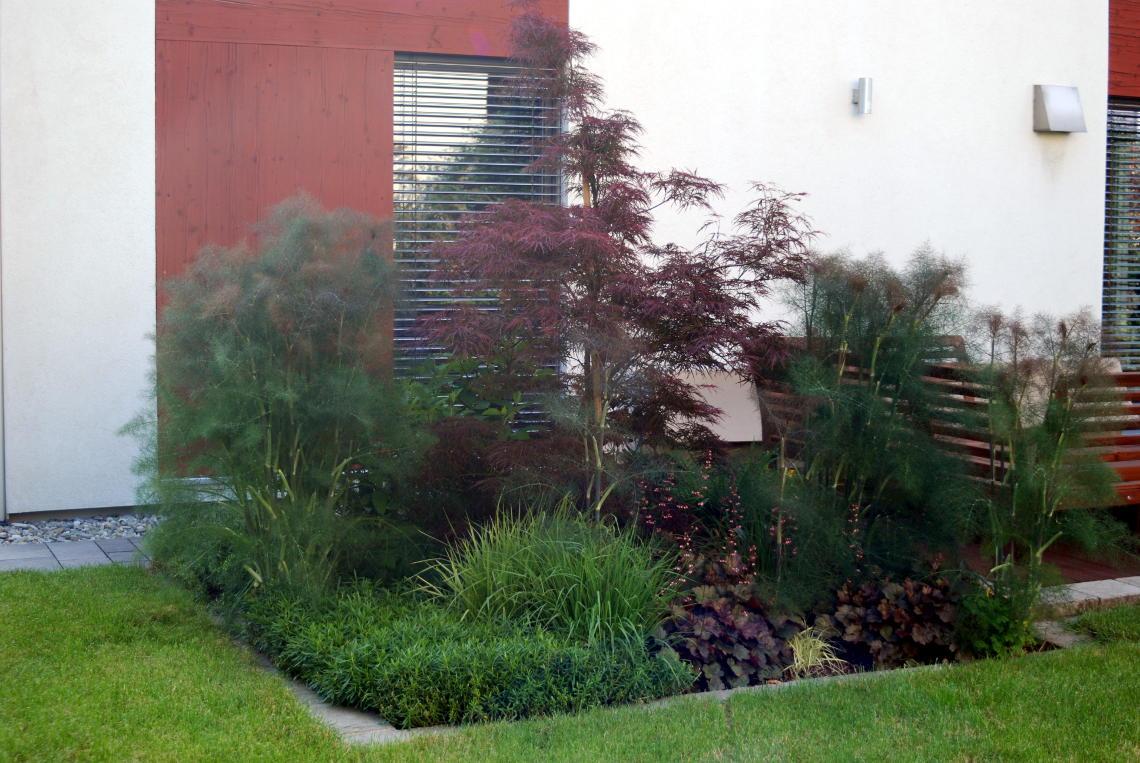 Beispielbild eines Gartenbeets