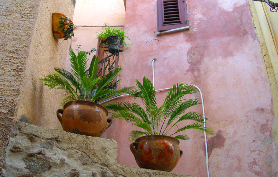 Kübelpflanzen in italienischem Dorf