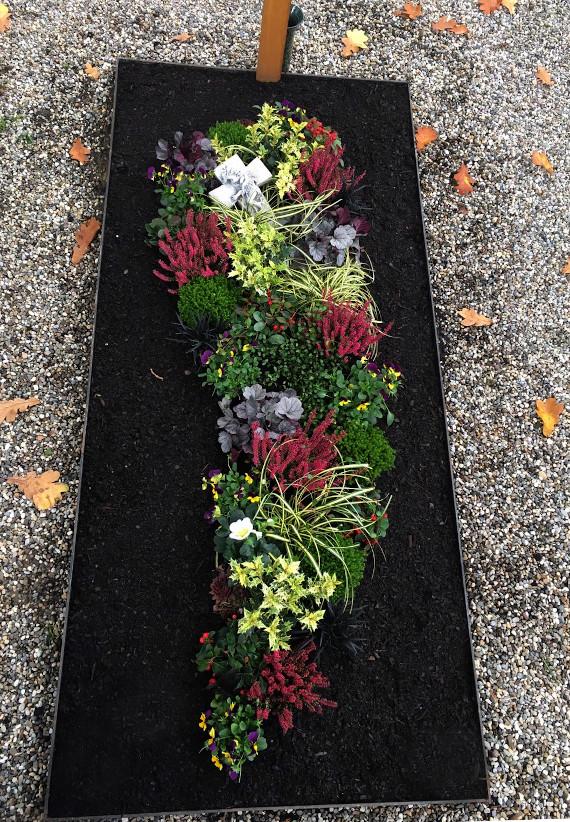 Bild einer Grabbepflanzung